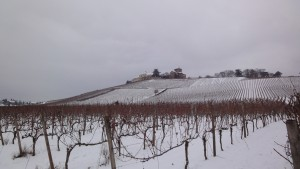 Schloss Johanisberg5