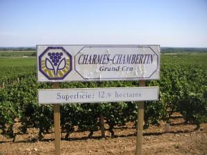 Charmes-Chambertin2