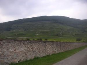 Weinbach4