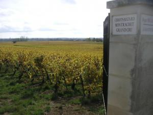 Criots-Batard-Montrachet