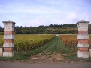 Puligny 1er Clos du Cailleret